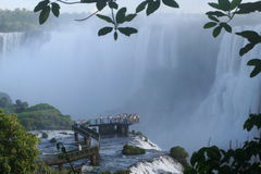 Majestic falls. Iguazu Falls is one of the most imposing natural attractions in Argentina Royalty Free Stock Images
