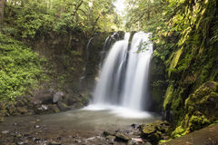 Majestic Falls. Is one of a handful of waterfalls in McDowell Creek Park near Lebanon, Oregon Royalty Free Stock Image