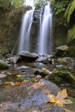 Autumn Leaves and Waterfall Stock Photography