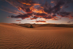 Majestic fiery sunset in the Gobi Desert. Royalty Free Stock Photo