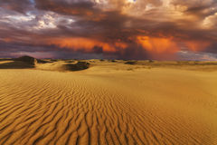 Majestic fiery sunset in the Gobi Desert. Stock Image