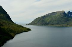 Majestic fjord and mountain landscape panorama photo senja island. Summer Stock Photo