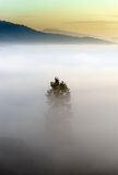 Majestic fog ocean in the mountains on sunset Royalty Free Stock Photo