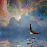 Majestic Freedom Royalty Free Stock Photography