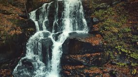 Majestic golden autumn mountain waterfall stream stock footage