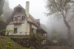 Majestic house in a foggy forest Royalty Free Stock Images