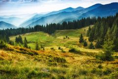 Majestic landscape of summer mountains. A view of the misty slopes of the mountains in the distance. royalty free stock image