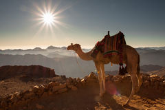 The majestic landscape. View from Mount Sinai at dawn. Photographer at work. Egypt Royalty Free Stock Photos