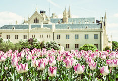 Majestic Lednice castle with flowering tulips, southern Moravia,. Czech republic. Travel destination. Beautiful place. Yellow photo filter stock photography