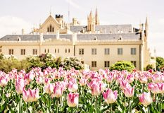 Majestic Lednice castle with flowering tulips, yellow filter. Majestic Lednice castle with flowering tulips, southern Moravia, Czech republic. Travel destination stock photography