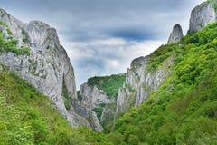 Majestic limestone gorge Stock Photos
