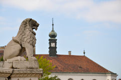 Majestic lion. Medieval sculpture, Budapest, Hungary royalty free stock image
