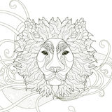 majestic lion coloring page Royalty Free Stock Images