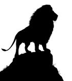 Majestic lion. Editable vector silhouette of a male lion standing on a rocky outcrop with lion as a separate object Stock Photo