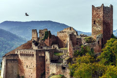 Majestic medieval castle  Saint-Ulrich on the top of the hill Royalty Free Stock Photo