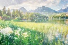 Majestic mountain lake in National Park High Tatra. Strbske ples Stock Image