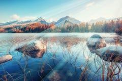 Majestic mountain lake in National Park High Tatra. Strbske ples Stock Photography