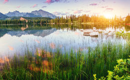 Majestic mountain lake in National Park High Tatra. Strbske ples Royalty Free Stock Images