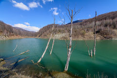 Majestic mountain lake in Romania. Horizontal view with forest g. Reen lake, bare trees over mountain landscape Royalty Free Stock Photography