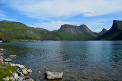 Majestic mountain peaks and blue fjord landscape senja island. Summertime Stock Images