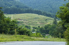 Majestic mountain top overgrown with  forest, valley and grass glade, Central Balkan mountain, Stara Planina Royalty Free Stock Image