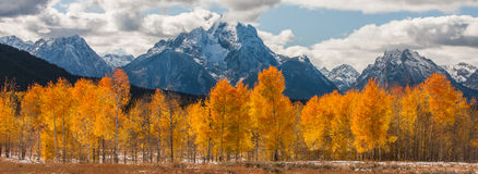 Majestic mountains and fiery trees Stock Image