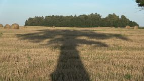 Majestic old big oak tree shadow on harvested field in evening. Majestic old big oak tree shadow on harvested farmland field in evening stock video
