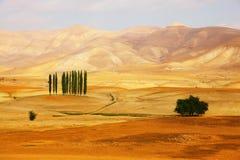 Majestic orange desert Stock Image