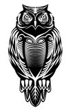 Majestic owl. Bird for mascot or tattoo design Stock Image