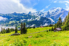 Majestic panoramic view of Eiger, Monch, Jungfrau mountains from Murren-Gimmelwald trail, Swiss alps, Bernese Oberland, Berne. Canton, Switzerland, Europe Royalty Free Stock Photography
