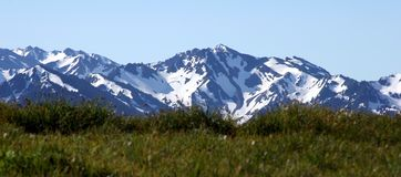 Majestic Peaks. The Olympic mountains in Washington state royalty free stock photo