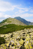 Majestic Retezat mountains. Mountain ridge in the retezat mountains Stock Photos
