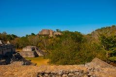 Majestic ruins in Ek Balam. Ek Balam is a Yucatec Maya archaeological site within the municipality of Temozon, Yucatan, Mexico. Majestic ruins in Ek Balam stock photos