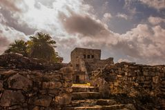 Majestic ruins in Tulum,Yucatan, Mexico. Tulum is the site of a pre-Columbian Mayan walled city stock photography