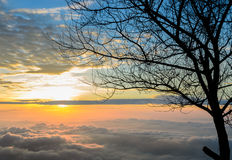 Majestic sunrise with sea of fog Royalty Free Stock Images