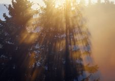 Majestic sunset in the mountains landscape. Carpathian, Ukraine Stock Photography