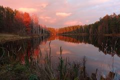 Majestic sunset over beautiful forest lake. Royalty Free Stock Photography
