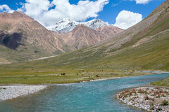 Majestic turquoise river in Tien Shan mountains Royalty Free Stock Image