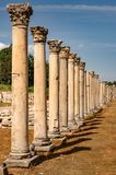 Majestic view of Agora of Ephesus from columnar road and columns, Izmir, Turkey. Majestic view of Agora of Ephesus from columnar road and columns,Turkey royalty free stock image