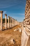 Majestic view of Agora of Ephesus from columnar road and columns, Izmir, Turkey. Majestic view of Agora of Ephesus from columnar road and columns,Turkey stock images