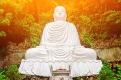 Majestic view of Buddha statue among green trees. Toned image Stock Image