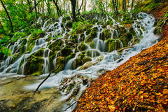 Majestic view of a deep forest waterfall on a sunny autumnal day in Plitvice National Park stock photos