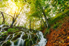 Majestic view of a deep forest waterfall on a sunny autumnal day in Plitvice National Park, Croatia royalty free stock photo