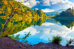 Majestic view of the Plitvice Lakes National Park. Royalty Free Stock Photos