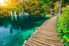 Majestic view on turquoise water and sunny beams in the Plitvice Lakes National Park. Croatia. Stock Images