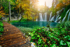 Majestic view on turquoise water and sunny beams in the Plitvice Lakes National Park. Croatia. Europe Royalty Free Stock Image