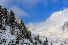 Majestic view on winter mountain valley Royalty Free Stock Photography