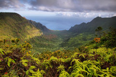 Majestic views of Napali coast from Kalalau lookout Stock Photography