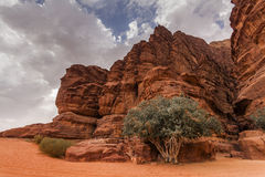 Majestic views of the Wadi Rum desert. Stock Images