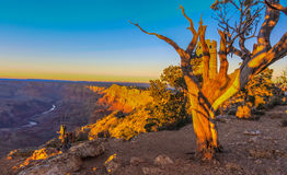 Majestic Vista of the Grand Canyon at Dusk. Beautiful Landscape of Grand Canyon from Desert View Point during dusk stock photo